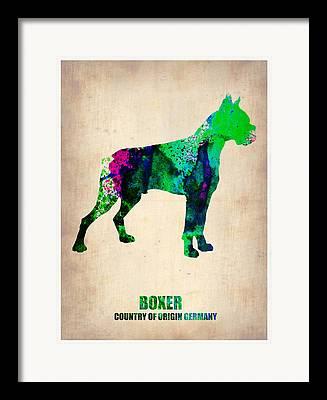 Boxer Dog Digital Art Framed Prints