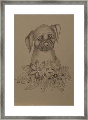 Boxer Pup 16-01 Framed Print