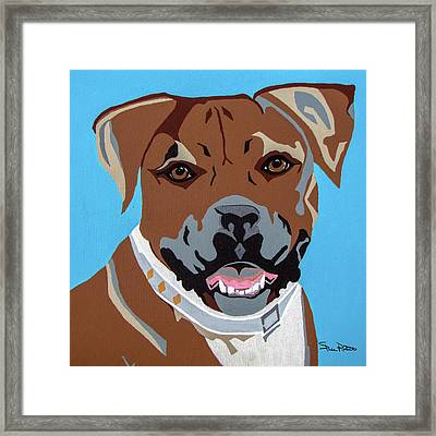 Boxer Framed Print