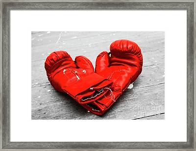 Boxer Still Life Framed Print by Jorgo Photography - Wall Art Gallery