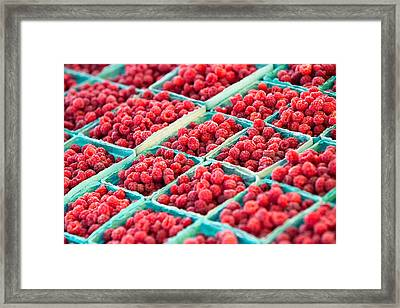 Boxes Of Raspberries Framed Print by Todd Klassy
