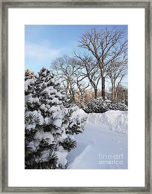 Boxing Day Framed Print