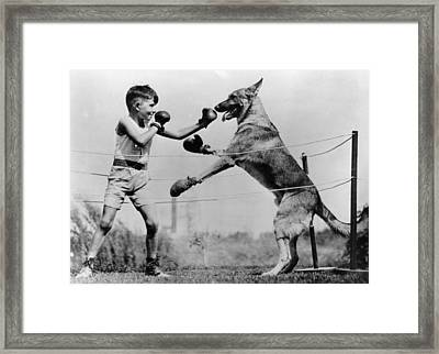 Boxing With Dog Framed Print by Topical Press Agency