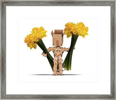 Boxman Holding Large Bunches Of Daffodils Framed Print