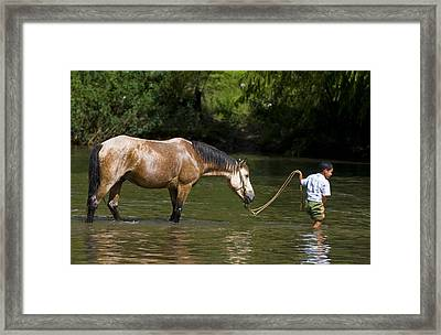 Boy With Horse Framed Print by Kobby Dagan