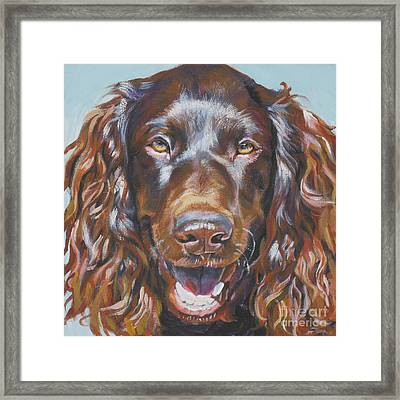 Boykin Spaniel Framed Print by Lee Ann Shepard