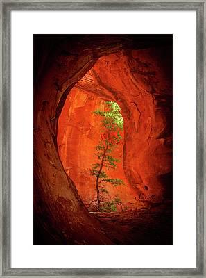Boynton Canyon 04-343 Framed Print