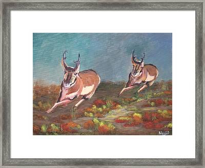 Boys.... Framed Print by Bill Werle