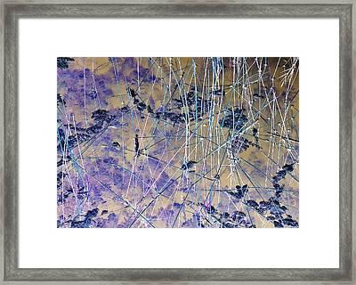 J-lintz - Brackets Framed Print