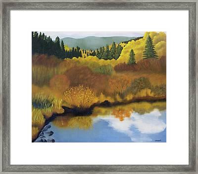 Bragg Creek Framed Print by Joanne Giesbrecht