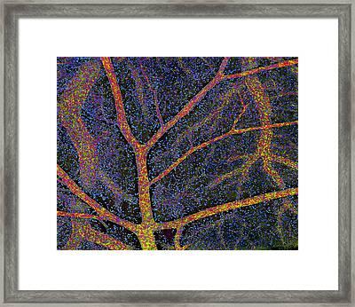 Brain Tissue Blood Supply Framed Print by Thomas Deerinck, Ncmir