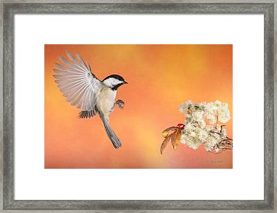Braking For The Rose Hip Framed Print by Gerry Sibell