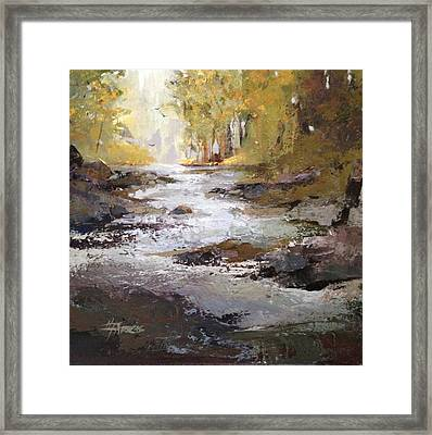 Bramble Brook Framed Print
