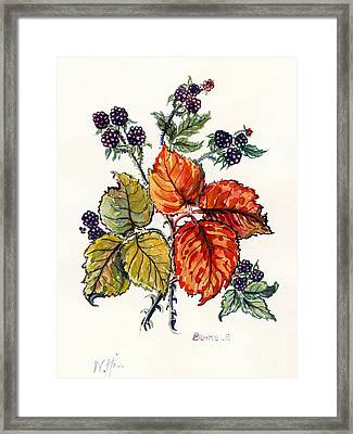 Bramble Framed Print by Nell Hill