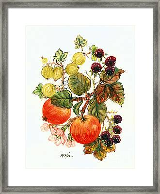 Brambles, Apples And Grapes  Framed Print