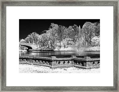 Framed Print featuring the photograph Branch Brook Park New Jersey Ir by Susan Candelario