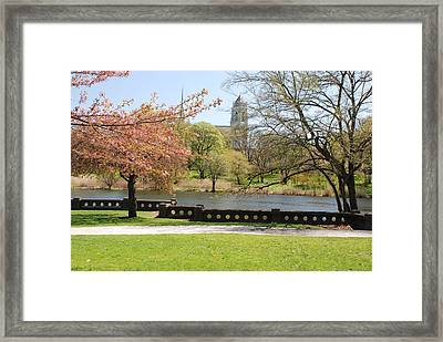 Branch Brook Park Framed Print by William Thomas