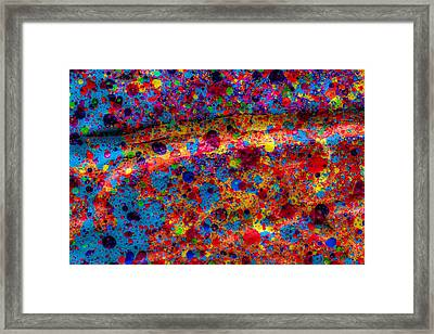 Branch Off Framed Print by Sean Corcoran