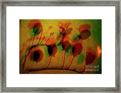 Branch With Kiwi. Framed Print