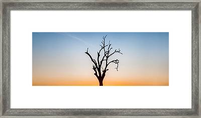 Branches Framed Print by Az Jackson