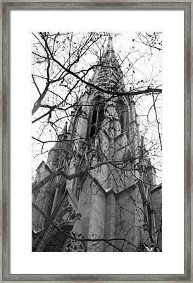 Branches Of Faith Framed Print by Ashley Porter