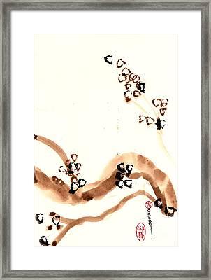 Branches Of Oak Framed Print