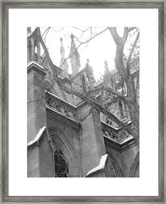 Branches Of Prayer Framed Print by Kate Collins