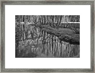 Branches Reflected In Yosemite Framed Print