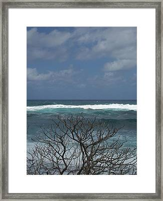 Branches Waves And Sky Framed Print