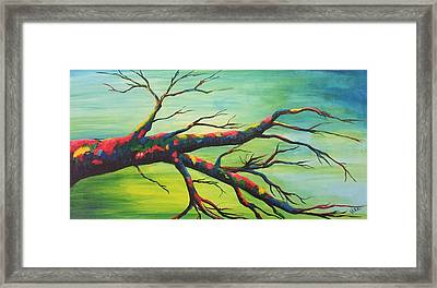 Branching Out In Color Framed Print