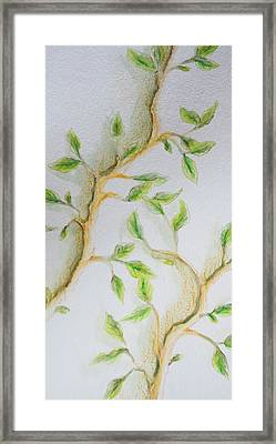 Branching Out Framed Print by Kathleen Voort
