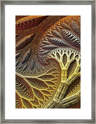 Branching Out Framed Print by Lyle Hatch
