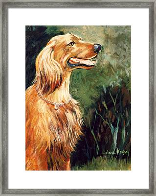 Brandy   Irish Setter Framed Print by JoAnne Corpany