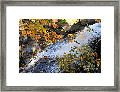 D30a-18 Brandywine Falls Photo Framed Print