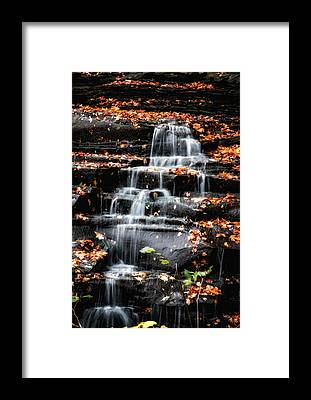 Brandywine Framed Prints