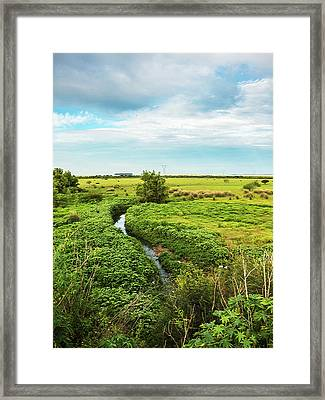 Brazilian Pampa Framed Print