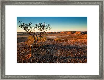 Breakaway Dawn Framed Print by Mike  Dawson