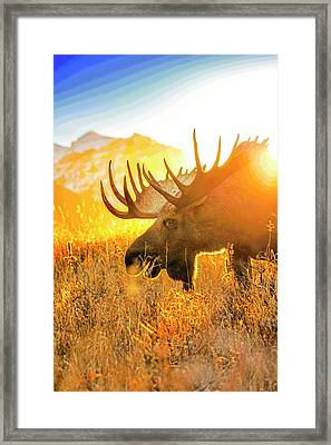 Breakfast At Sunrise Abstract Framed Print