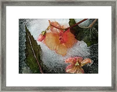 Breaking Heart Framed Print by Carmen Moise