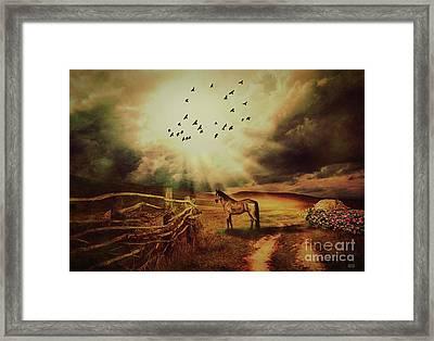 Breaking Sun Framed Print by Kathy Franklin