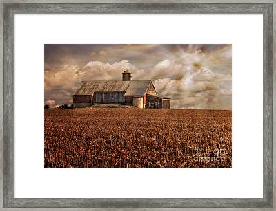 Breaking Through Framed Print by Lois Bryan