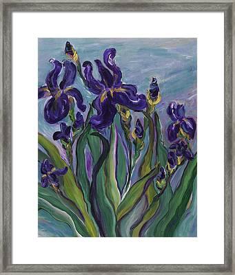 Breath Of Iris Framed Print by Bev Veals