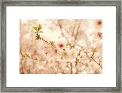 Breathe - Holmdel Park Framed Print by Angie Tirado