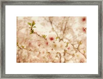 Breathe - Holmdel Park Framed Print