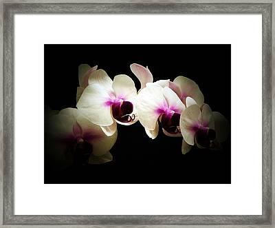 Breathless Beauty Framed Print
