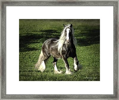 Breathtaking Silver Reign Framed Print by Terry Kirkland Cook