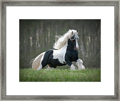 Breathtaking Stallion Framed Print