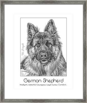Breed Poster German Shepherd Framed Print by Tim Wemple