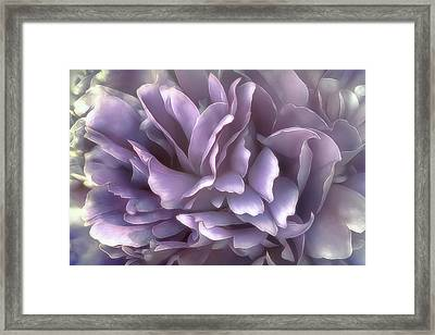 Framed Print featuring the photograph Breeze In Cool Lilac by Darlene Kwiatkowski