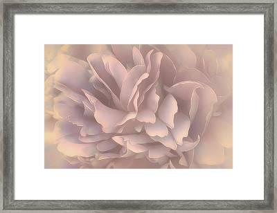 Framed Print featuring the photograph Breeze In Pastel Pearl by Darlene Kwiatkowski